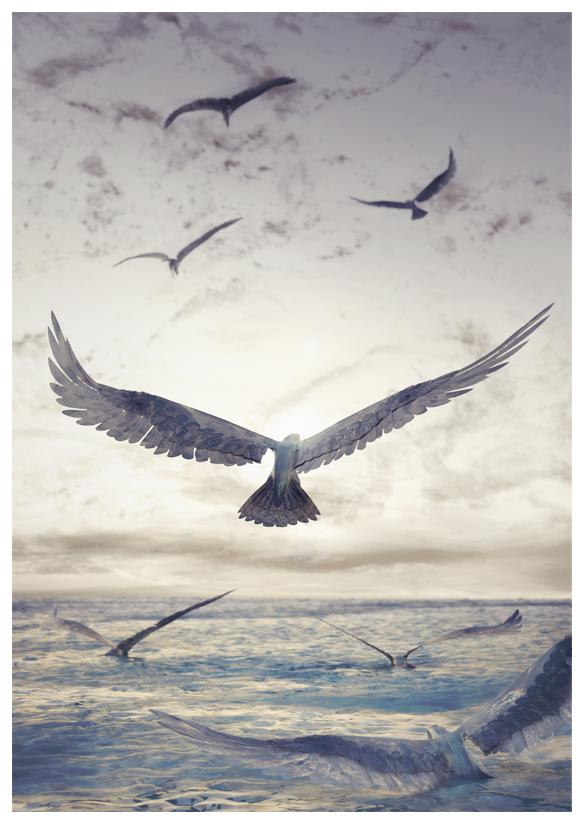 http://boucard.laurent.free.fr/images/monde%20trois.jpg