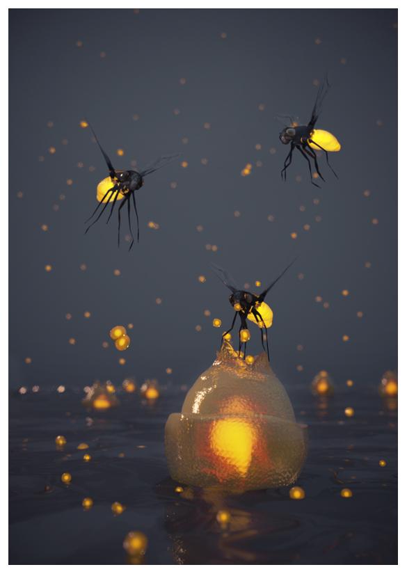 http://boucard.laurent.free.fr/images/monde4.jpg